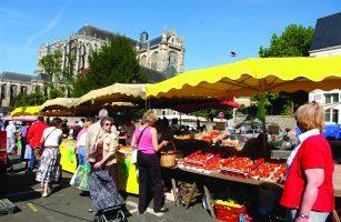 vivre au Mans- marché cathédrale Jacobins